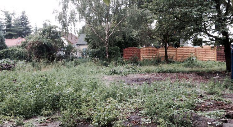 Bild des leeren Grundstücks